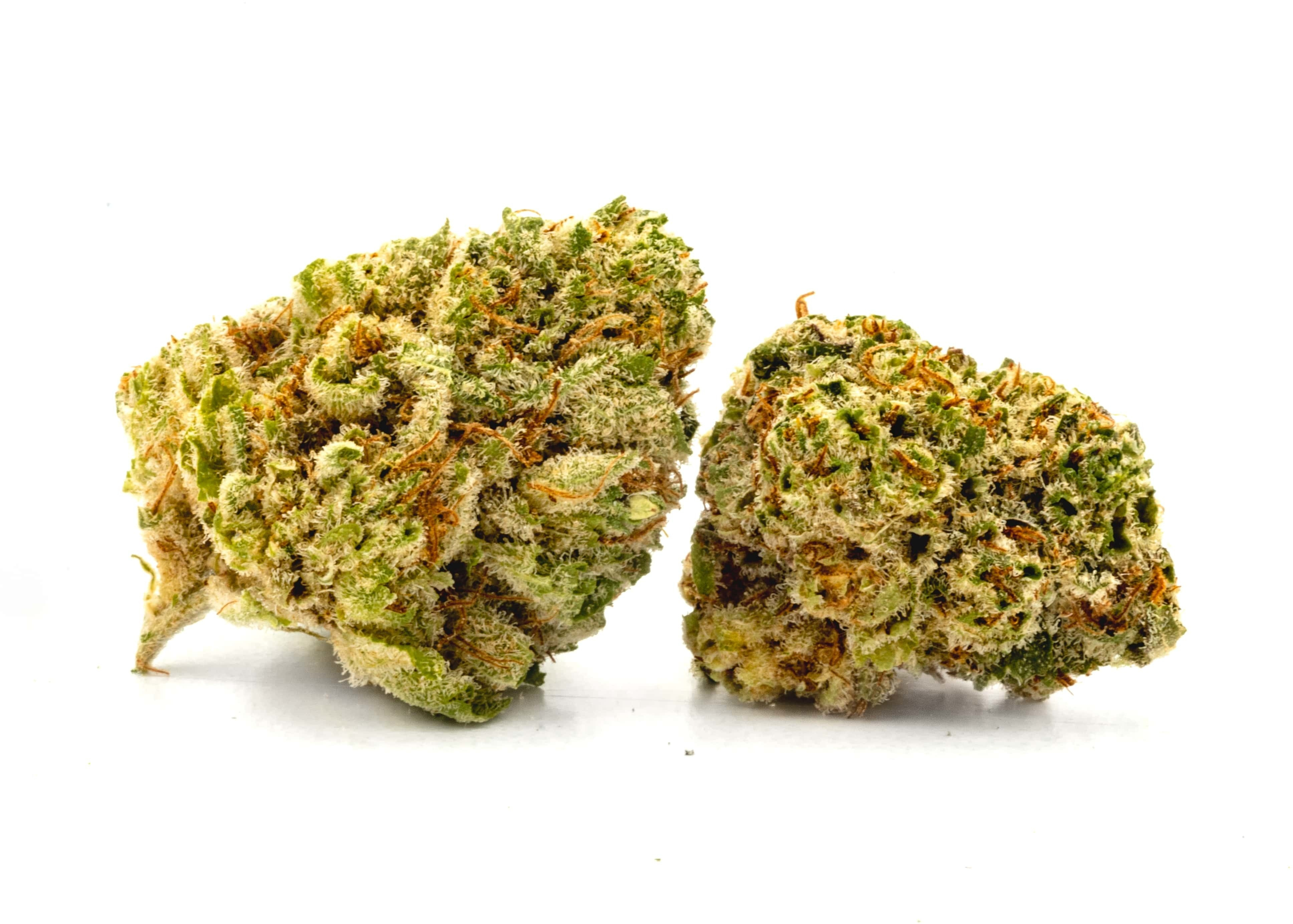 Afghani Purps Flower Flower Indica Dominant